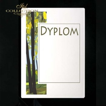 dyplom DS0148