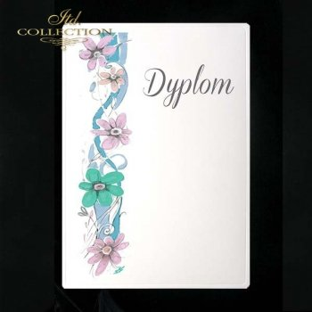 dyplom DS0079