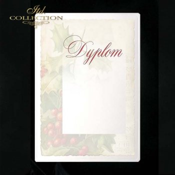 dyplom DS0052