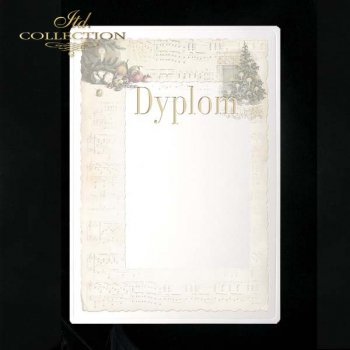 dyplom DS0048