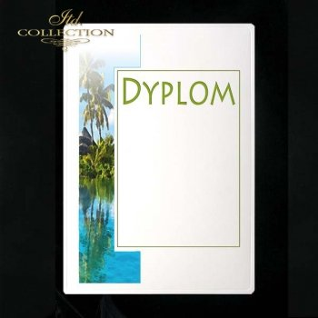 dyplom DS0147