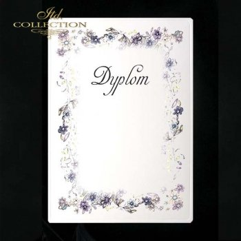 dyplom DS0013