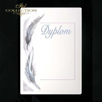 dyplom DS0098
