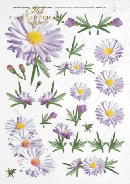 rice-decoupage-paper-daisy-flowers-garden-meadow-R0142