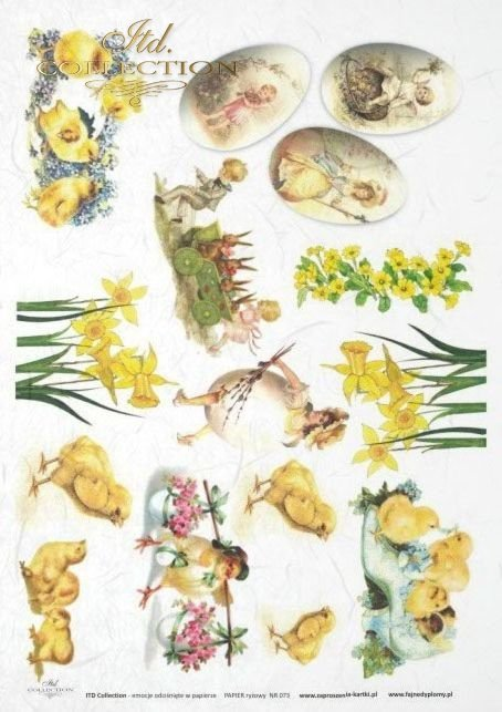rabbit, rabbits, hare, hares, bunn, bunnies, Easter, flower, flowers, daffodil, daffodils, egg, eggs, basket, baskets, chickens, chicken, R071