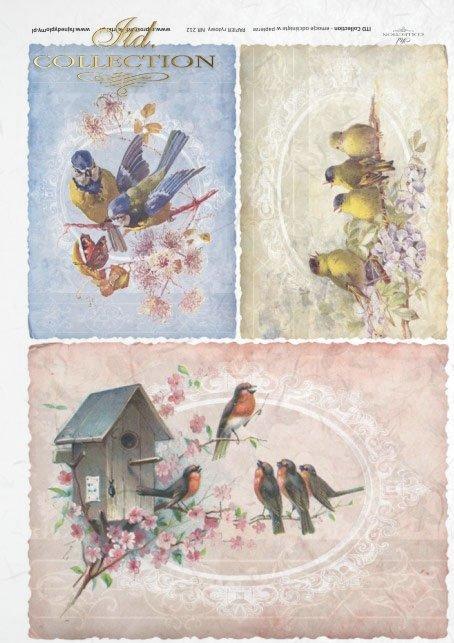 birds, merry birds, bird families, bird house, retro, vintage