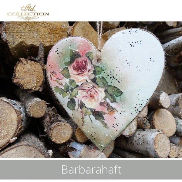 20190529-Barbarahaft-R0423-example 03
