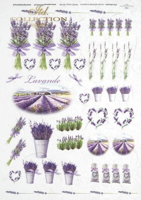 lawenda, lawendowe, bukiet, bukiety, flower, flowers, lavender, bouquets, bouquet, R040