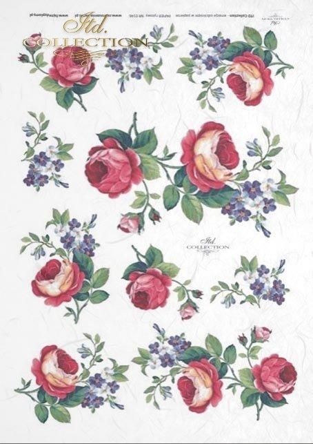 papier-decoupage-kwiaty-róża-niezapominajka-róże-niezapominajki-R0146