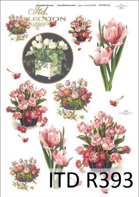 tulipan, tulipany, kwiat, kwiaty, kwiatek, kwiatki, bukiet, bukiety, R393