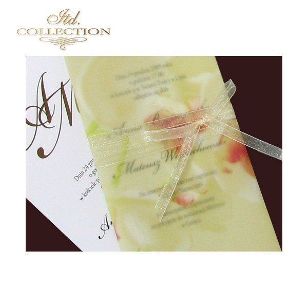 Invitations / Wedding Invitation 1472
