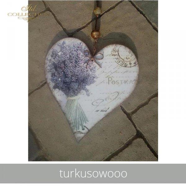20190527-turkusowooo-ITD S003-example 01