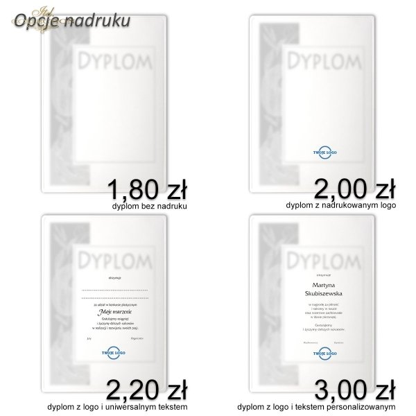 diploma DS0339 for business