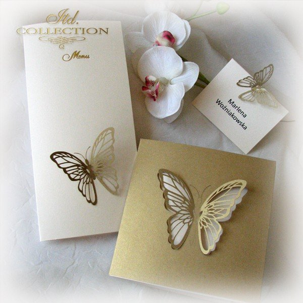 Invitations / Wedding Invitation 1695_97