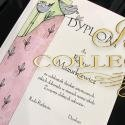 Diploma Birds 3
