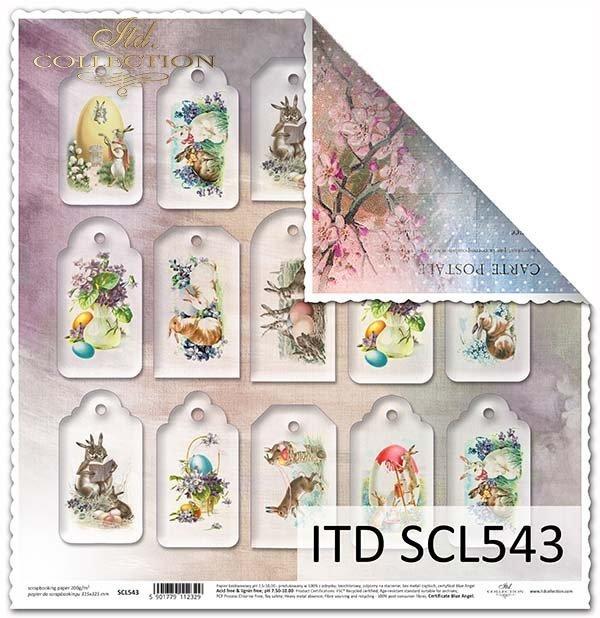 Papier scrapbooking SCL543