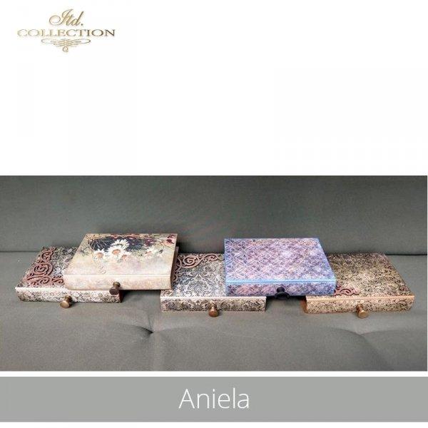 20190718-Aniela-R1101--R1194-R075L-example 02