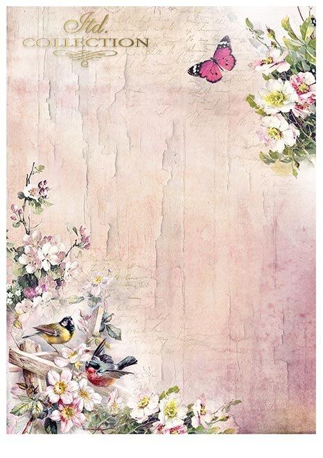 Zestawy-papierow-do-scrapbookingu-zestaw-Lato-w-rozach-SCRAP-045-04-ptaszki-motylki-kwiatki-kwiatuszki-mediowe-struktury-tla-struktury-farb-desek-spekaliny-crak