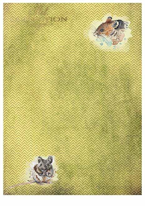 Papiery do scrapbookingu w zestawach - wesoła farma * Papiere für Scrapbooking in Sets - eine fröhliche Farm