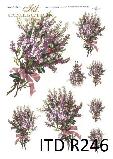 wrzosy, wrzos, kwiaty wrzosu, jesień, R246