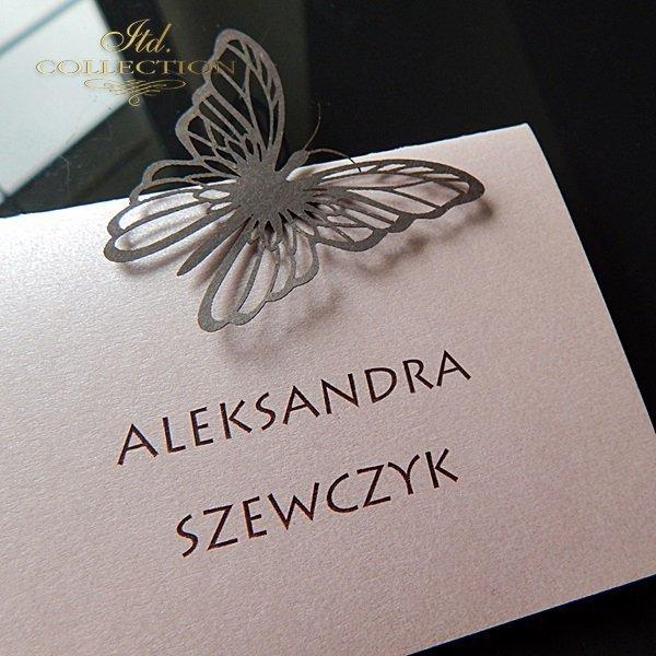 Winietka W1744_97_róż