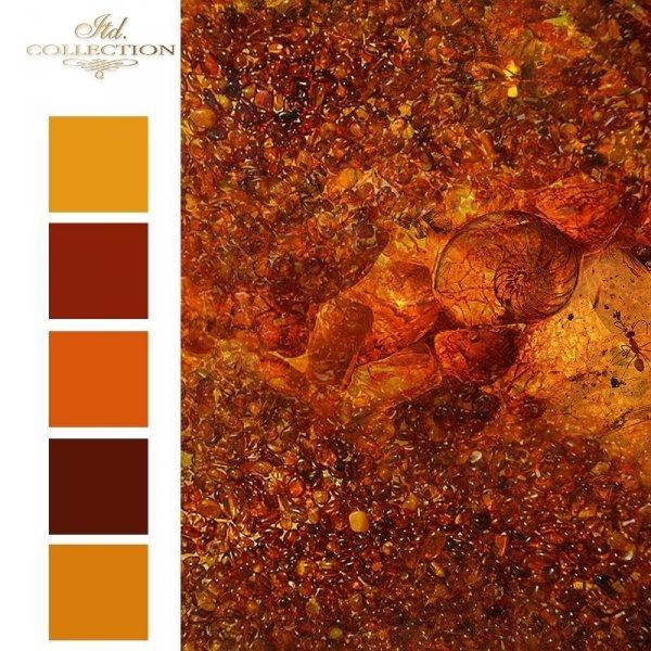 Zanurzone w bursztynie * Mini set - Submerged in amber - colours 1