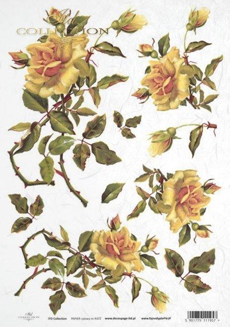 rose, roses, flower, flowers, bouquet, bouquets, R422