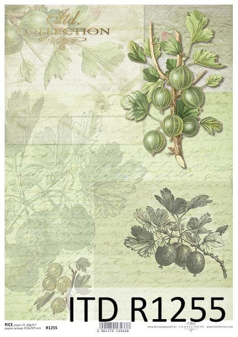 papier decoupage owoce, agrest*Paper decoupage fruit, gooseberry