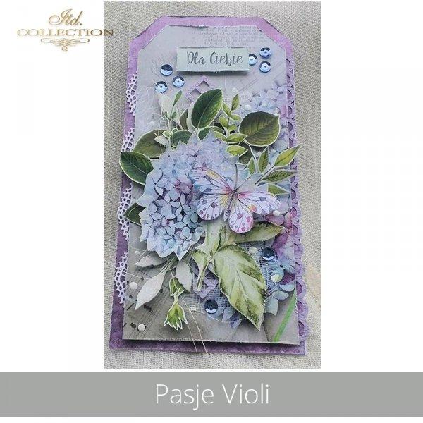 20190620-Pasje Violi-SCRAP-013 - example 03