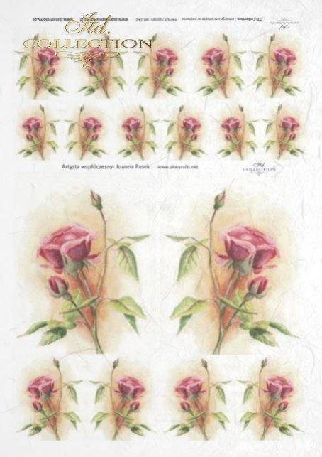 decoupage-kwiat-akwarela-róże-kwiaty-ogród-Joanna-Pasek-R0140