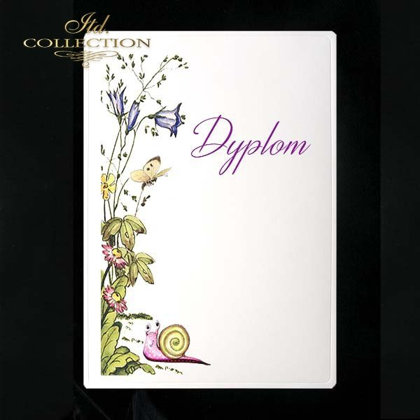 dyplom DS0116