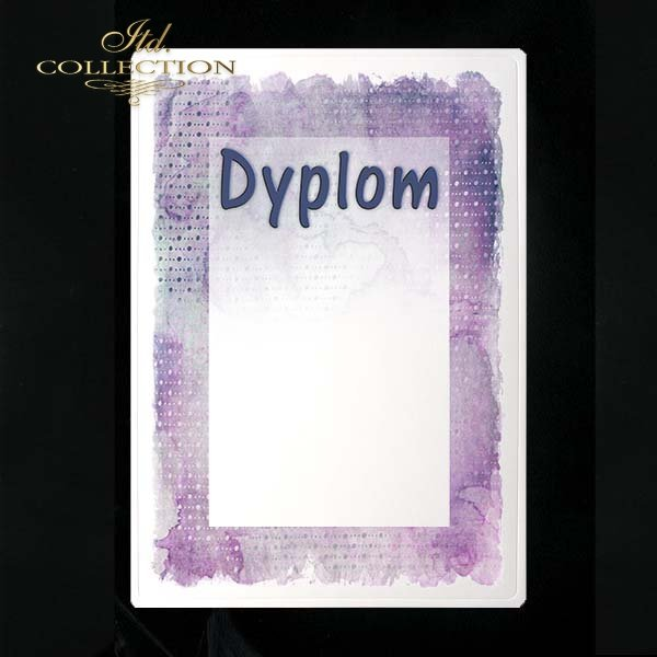 dyplom DS0201