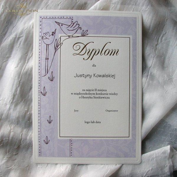 .Dyplom DS0500 Konkursowy Złocony
