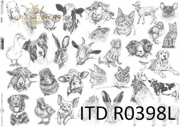 Papier ryżowy ITD R0398L