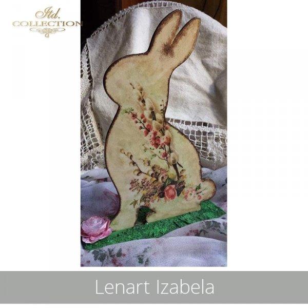 20190425-Lenart Izabela-R0301-example 2