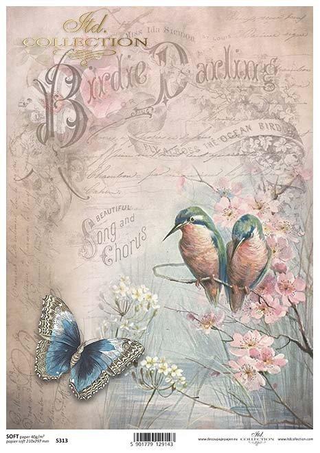 Papier Decoupage Schmetterling, Vögel*Papír decoupage motýl, ptáci*mariposa de papel decoupage, pájaros