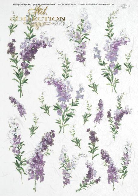 kwiaty-lawendy-lawenda-lawendowy-papier-ryżowy-do-decoupage-R0103