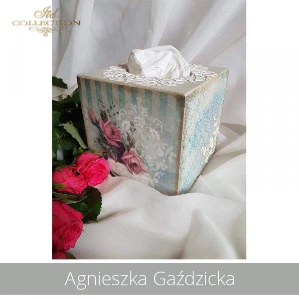 20190426-Agnieszka Gaździcka-ST0004-ST0066-example 02