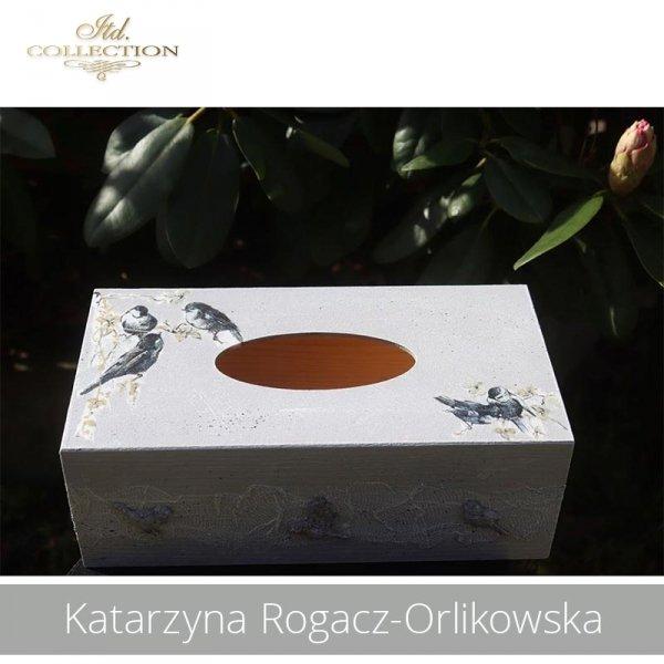 20190505-Katarzyna Rogacz-Orlikowska-R0201-example 02