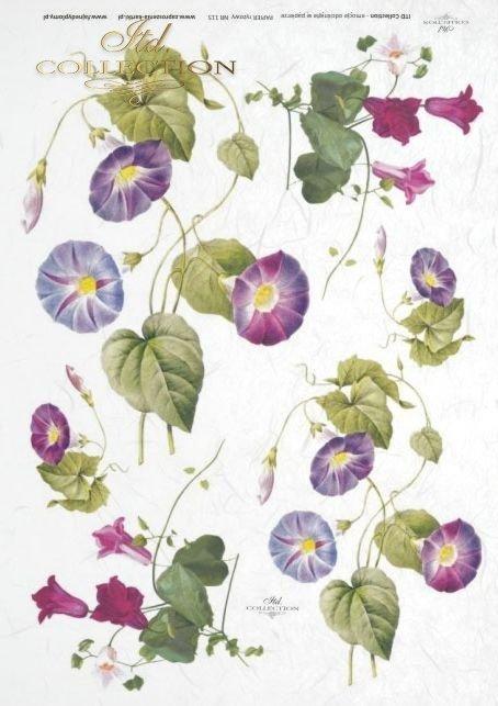papier-ryżowy-decoupage-powojnik-kwiaty-pączki-listki-ogród-łąka-R0115