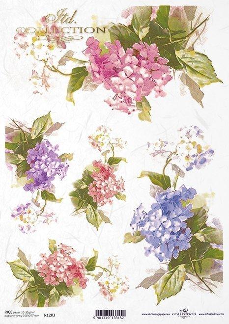 Flores de papel de arroz, hydrangea*Рисовые бумажные цветы, гортензии*Reispapierblumen , Hortensien