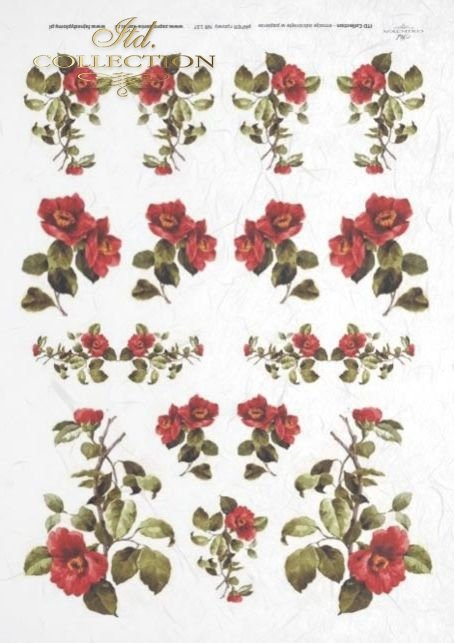 decoupage-rice-paper-flowers-buds-leaves-rose-roses-garden-R0137