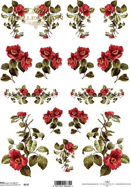 papier-ryżowy-kwiaty-pączki-liście-listki-róża-róże-ogród-R0137