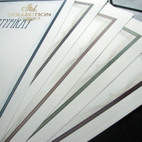 dyplom DS0288 certyfikat