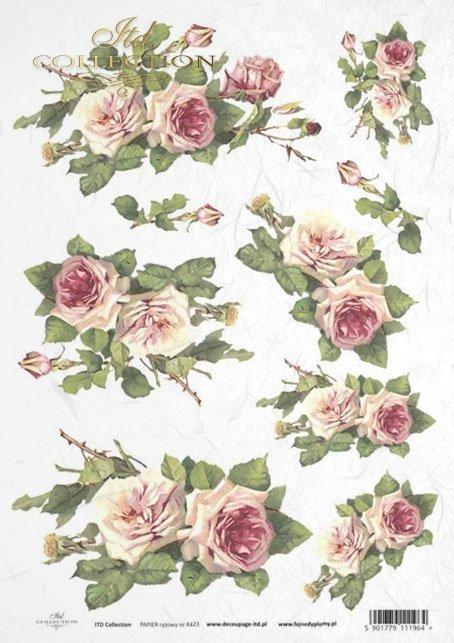 rose, roses, flower, flowers, bouquet, bouquets, R423