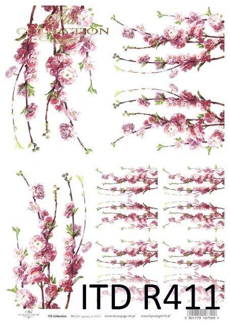 kwiat, kwiaty, kwiatek, kwiatki, listki, liście, płatki kwiatów, kwiat jabłoni, gałązka, kwitnąca, wiosna, R411