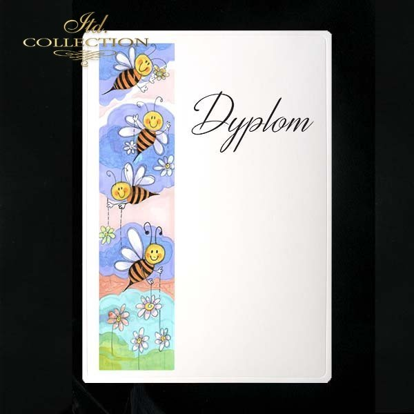 dyplom DS0082