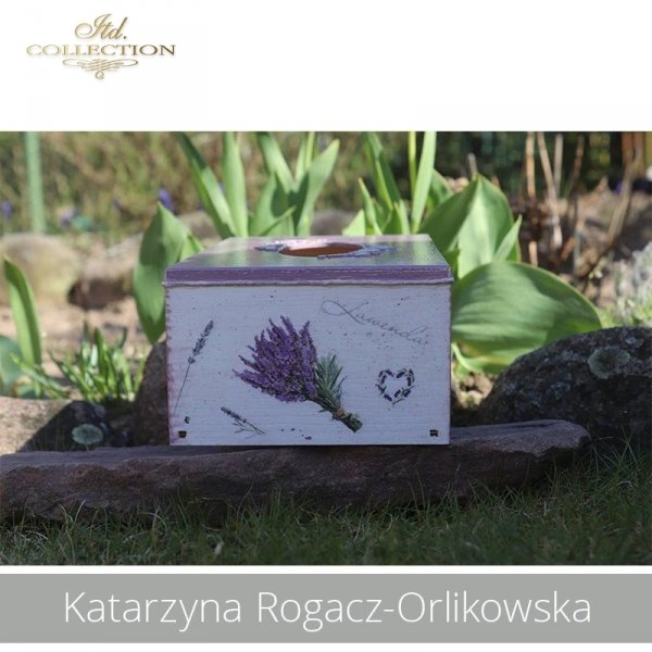 20190423-Katarzyna Rogacz-Orlikowska-R0151 R0040 - example 03