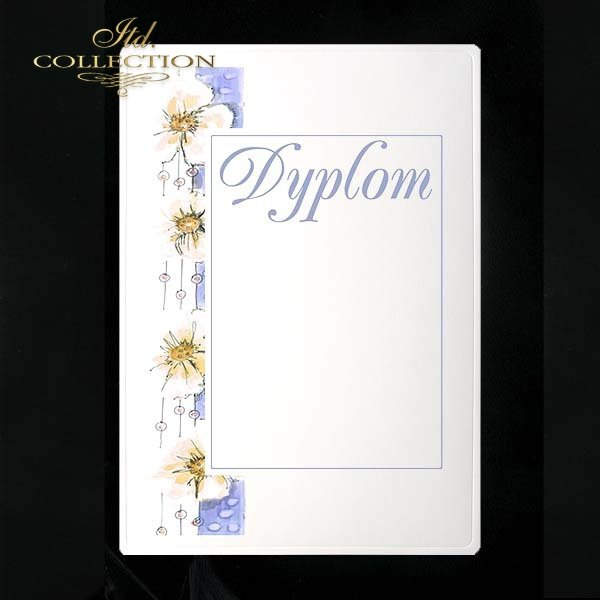 dyplom DS0108