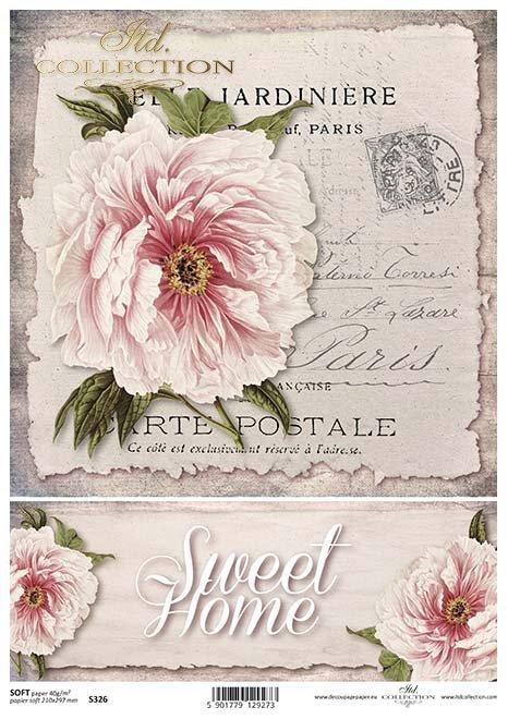 Decoupage papírové květiny, pivoňky*Flores de papel decoupage, peonía*Decoupage Papierblumen , Pfingstrosen